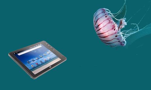 móviles contra medusas